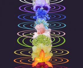 Hypnose, chakras et thérapie psycho-énergétique